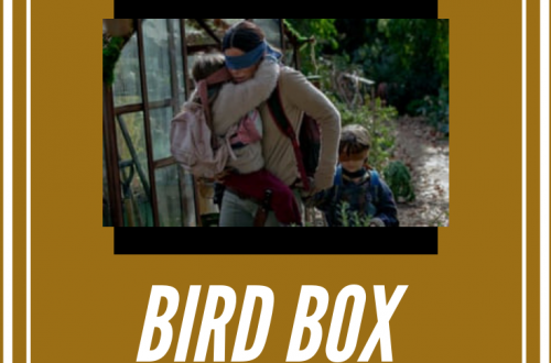 Bird Box On netflix